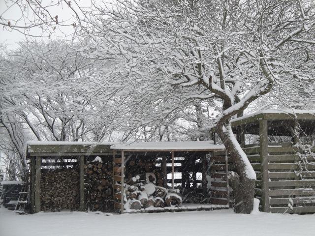 sneeuw_klein